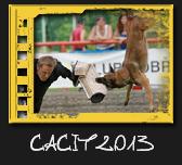 CACIT Dobříš 2013