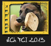 WCh FCI IPO 2013