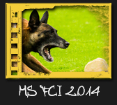 MS FCI IPO 2014
